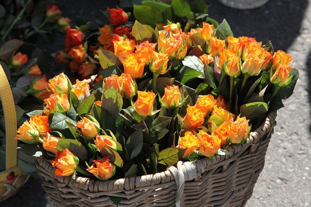Цветы для жен-мироносиц