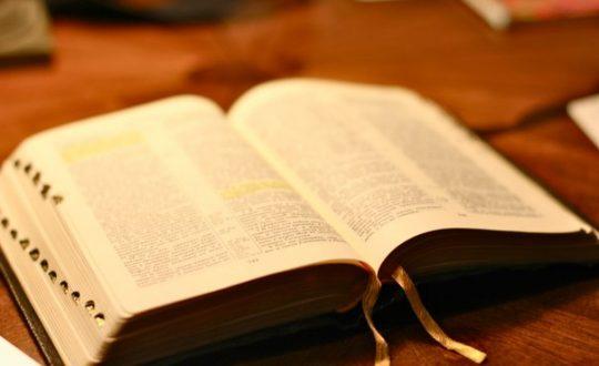 Волонтеры читают Священное Писание